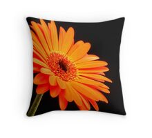 Orange Gerber Daisy Throw Pillow
