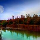 Across the Lake 2 by Susan E. King