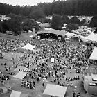Festival From The Ferris Wheel by Stangus