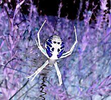 Midnight Dream on Halloween by Chuck Gardner