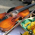 Violin by Pamela Jayne Smith