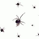 Black-Widows by shellyb