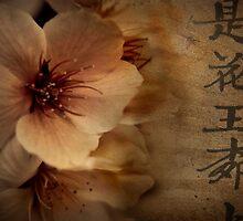 Asian Blossom by Lorraine Creagh