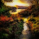 Killarney Lake Path by A90Six