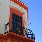 Lively Balcony by Rene Roldan