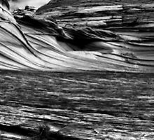 The Wave by Aaron Kittredge