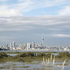 Auckland City Beyond by knomz