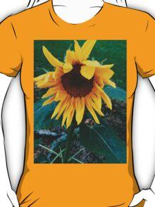 Sunflower Sentral  T-Shirt