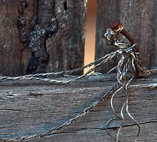 Fence Dancing by Natsky