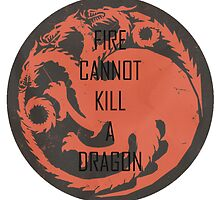 Fire Cannot Kill A Dragon by ellywills