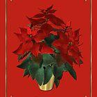 Seasons Greetings by EnchantedDreams