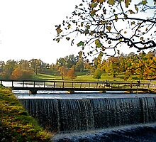 Studley Royal Lake -  the outlet! by dougie1