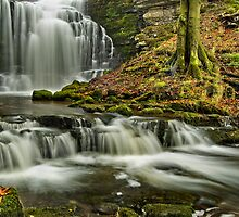 Scaleber Force near Settle by Steve  Liptrot