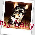 my baby by Tara Filliater