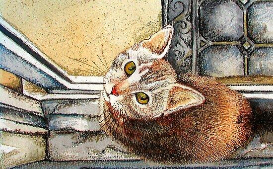 Catsill by bajidoo