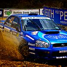 Mud Bath Free From Subaru by Peter Evans