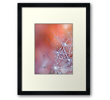 Crystals.  Framed Print