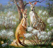 Kangaroos by Val Varetsa