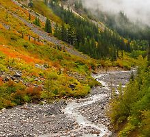 Fall Color in Stevens Canyon by lkamansky