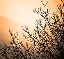 Mountain Silhouette by Jeff Harris
