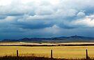 Foothills Sky by Leanna Lomanski