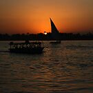 Nile Sunset by Roddy Atkinson