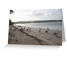 Time for a stroll. Greeting Card