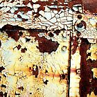 i love rust? by Jane McLean