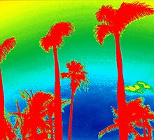Rainbow Palm Trees by Lisa DeLong