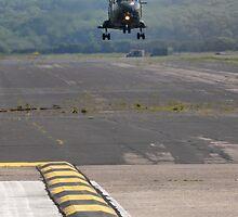 Landing strip by tayforth