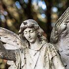 Angel with Bokeh by Karen Havenaar