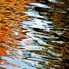 Reflection on Fall by Jeannette Sheehy