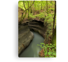 Parnant river through the springtime forest Canvas Print