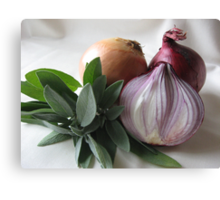 Sage & Onion Canvas Print