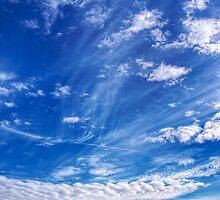 Heavens Reach by Alan Watt