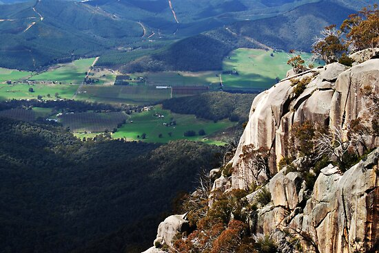 View from the Chalet Lookout - Mount Buffalo by Andrew Clinkaberry