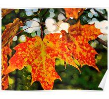 Autumn Joy Poster