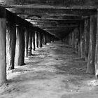 Under The Boardwalk. by Graham Ettridge
