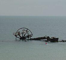 Indented Heads Ozone Shipwreck,Bellarine Peninsular, VIC by mariajd