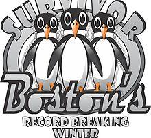 Survivor Boston's Record Breaking Winter 2015 by MontanaJack