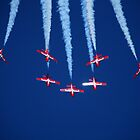 Canadian Snowbirds at San Francisco Fleetweek 2008 by Paul J. Owen