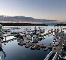 Nanaimo Harbour Walkway by Michael Russell
