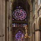 Notre Dame de Rheims by peter reid