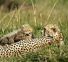Mom and kid by Yves Roumazeilles