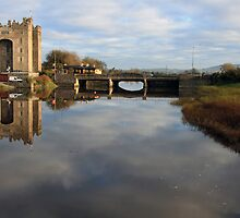 Bunratty castle morning view by John Quinn