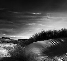 Waves And Shadows II by Pepijn Sauer