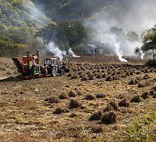 End of the Bean Harvest, Hokkaido. by johnrf