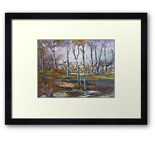 Out in the Sunshine Coast Bush, Australia Framed Print