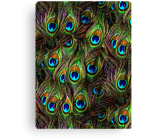 Peacock Feathers Invasion Canvas Print