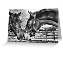 Equestrian friendship Greeting Card